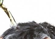 啤酒洗头发有什么好处 真的会让头发长的更快?